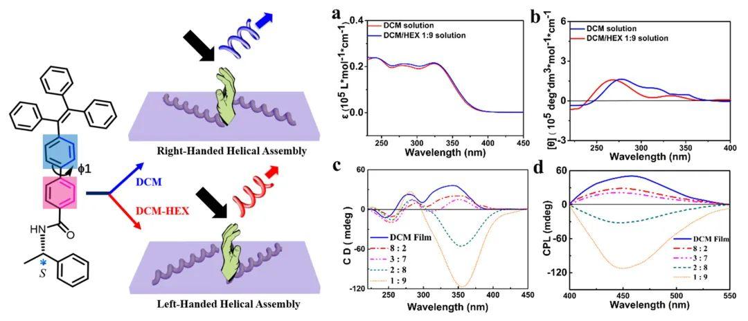 湘潭大学叶强博士在超分子手性反转研究方面取得突破性进展