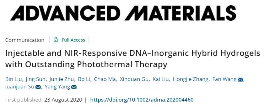 长春应化所王帆/同济大学杨洋《AM》:可直接注射DNA无机杂化水凝胶材料用于肿瘤光热治疗