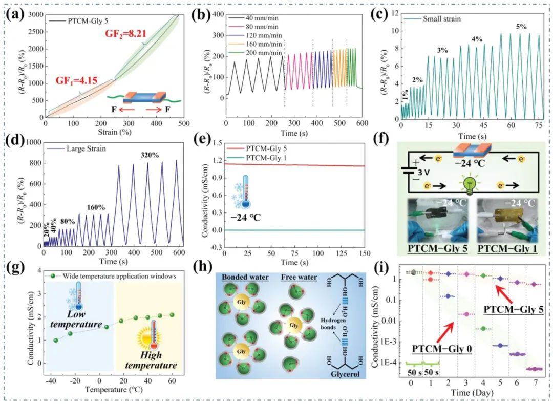 华南理工大学陈港团队《AFM》:MXene基抗冻超稳定导电有机水凝胶