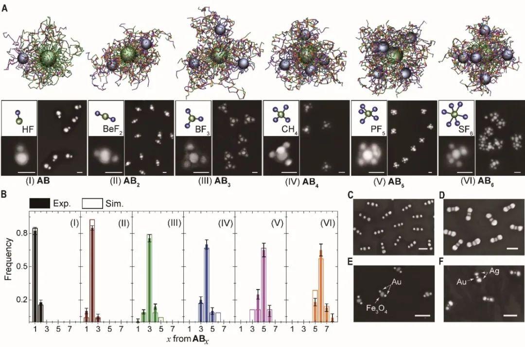"""复旦大学高分子系聂志鸿《Science》:在纳米""""人造分子""""制备领域取得重大突破"""