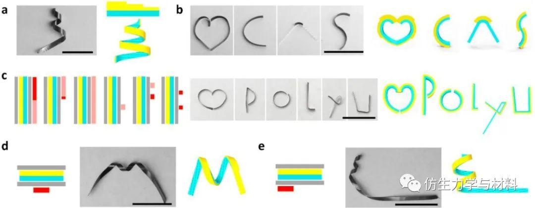 《自然·通讯》:形貌可定制的光控无绳柔性机器人