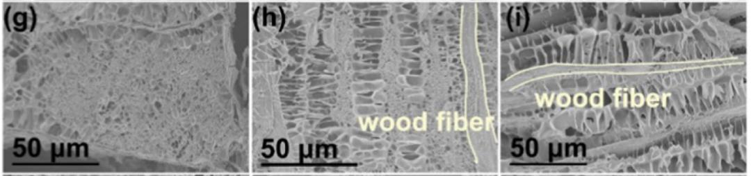 师法自然——浙江农林大学发明木质基水凝胶压力传感器