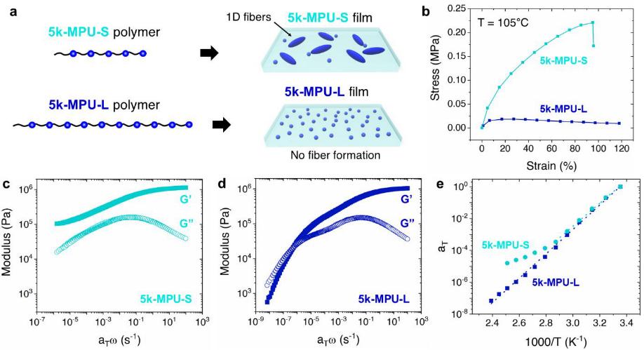 短的比长的好!鲍哲南院士《JACS》:基于新型多位点柔性高分子自组装单元的纳米纤维