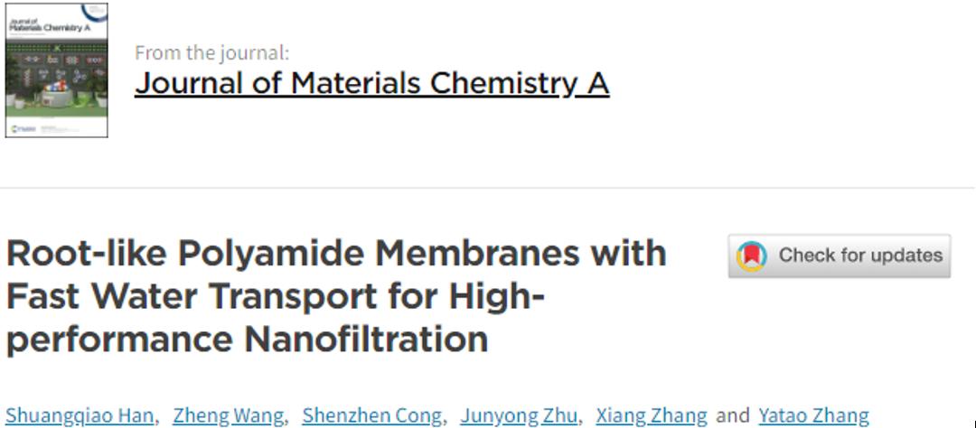 """郑州大学张亚涛教授课题组《JMCA》:具有纳米尺度""""根状""""结构的水净化纳滤膜"""