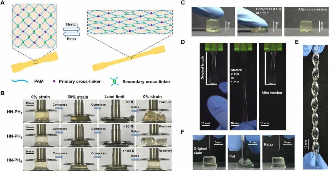 《Science》子刊:高强度、高韧性、可快速回复的水凝胶