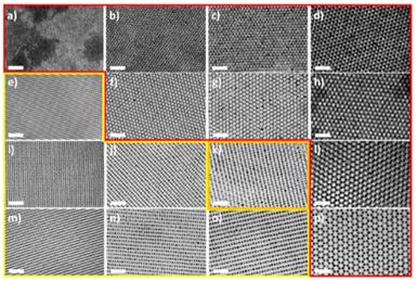 韩国科学技术院《ACS Nano》:手把手教你花样制备纳米粒子!