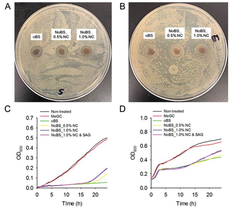 《AFM》自然启发的骨密封剂:多功能纳米粘土有机水凝胶骨密封剂促进骨再生