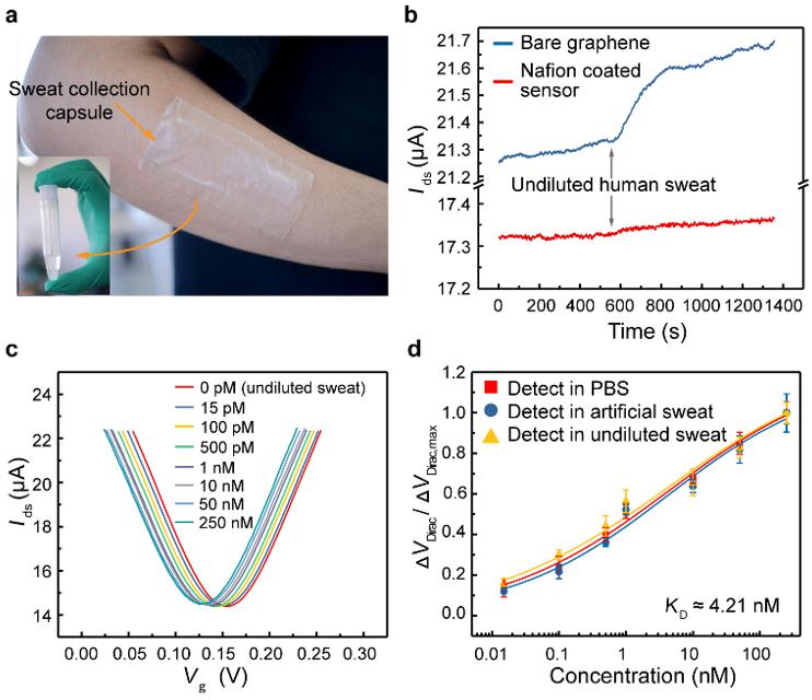 哈工大潘昀路教授团队《Adv. Funct.Mater.》:可在人类汗液中检测的柔性可再生石墨烯生物传感器