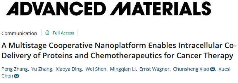 陈学思院士团队《AM》: 构建多级合作的纳米平台用于蛋白质/化疗药物的胞内共递送