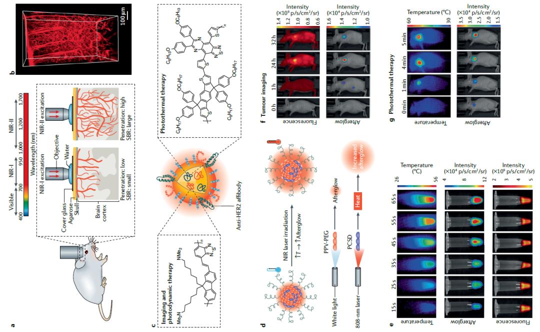 Ian manners院士《Nature Reviews Mater.》重磅综述:π-共轭聚合物方案组装功能性纳米颗粒