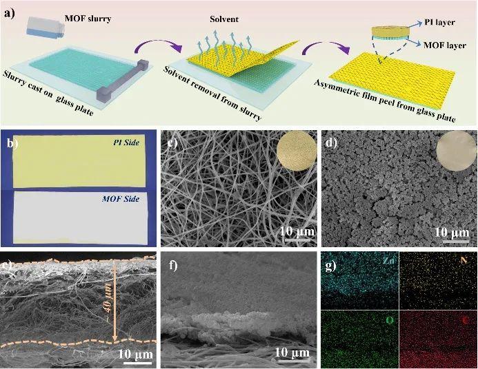 北京科技大学范丽珍教授团队《AFM》:借助MOF层构建非对称聚合物固体电解质用于锂金属电池
