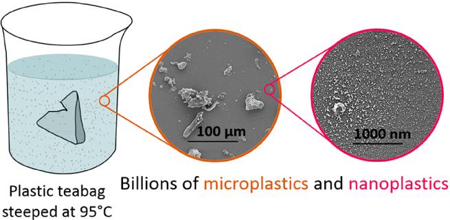 确有事实还是危言耸听?泡一袋茶,泡出百亿微塑料?结论起争议!