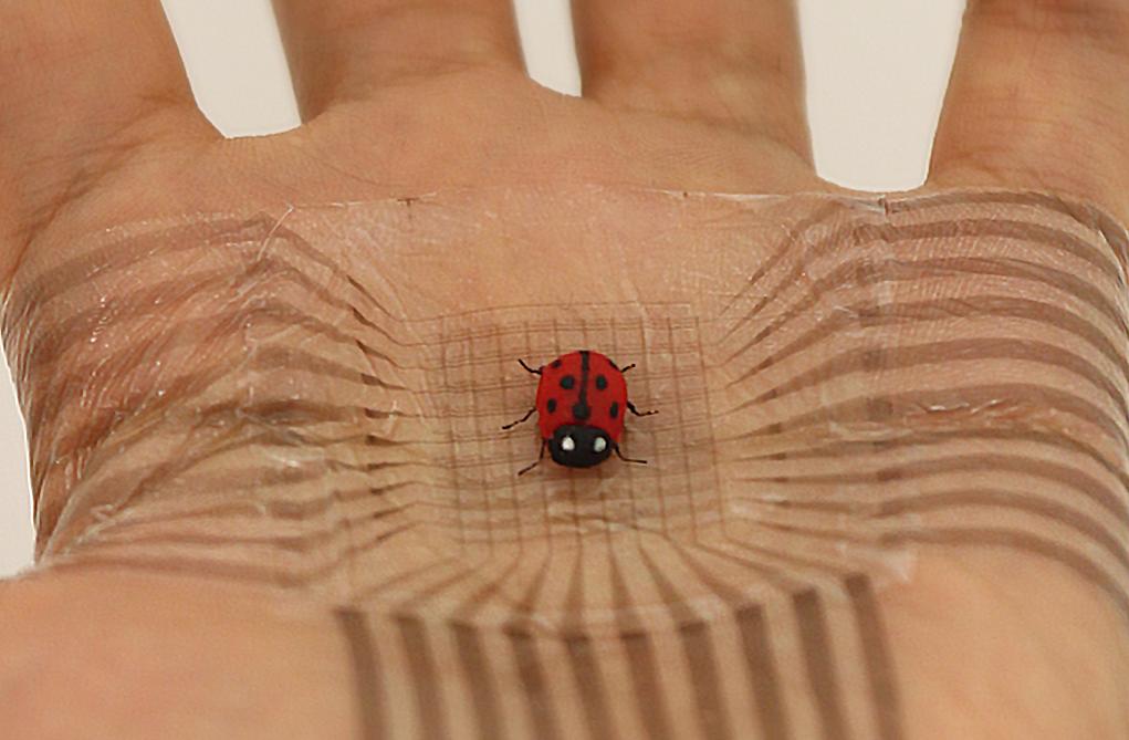 鲍哲南:突破电子皮肤三个关键问题,未来让皮肤实现手机的功能