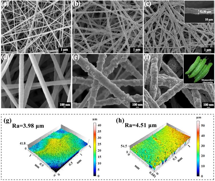 西北师范大学李健教授团队《ACS AMI》:牺牲模板策略制备自清洁纳米纤维膜可高通量有效分离水包原油乳液