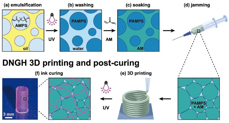 《AFM》:3D打印制造高强韧双网络颗粒水凝胶
