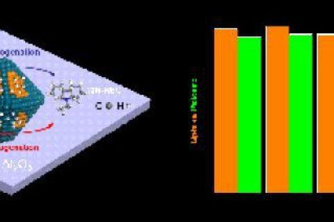 分子筛多孔材料研究获进展
