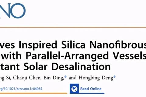 二氧化硅纳米纤维气凝胶用于耐盐太阳能海水淡化
