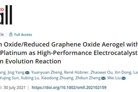 中山大学杨静/刘卫:低含量Pt气凝胶作为析HER的高性能电催化剂