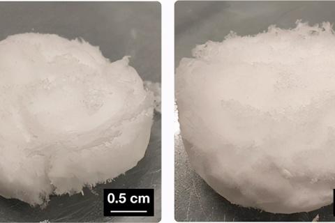 《Biomacromolecules》自组装3D 纤维蛋白原水凝胶和气凝胶